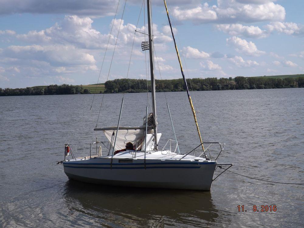 DSCF5355